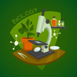 Read more about the article Biology Revision Questions KCSE Mocks 2013
