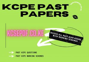Read more about the article KCPE 2020 Past Papers with Marking Scheme – March 2021